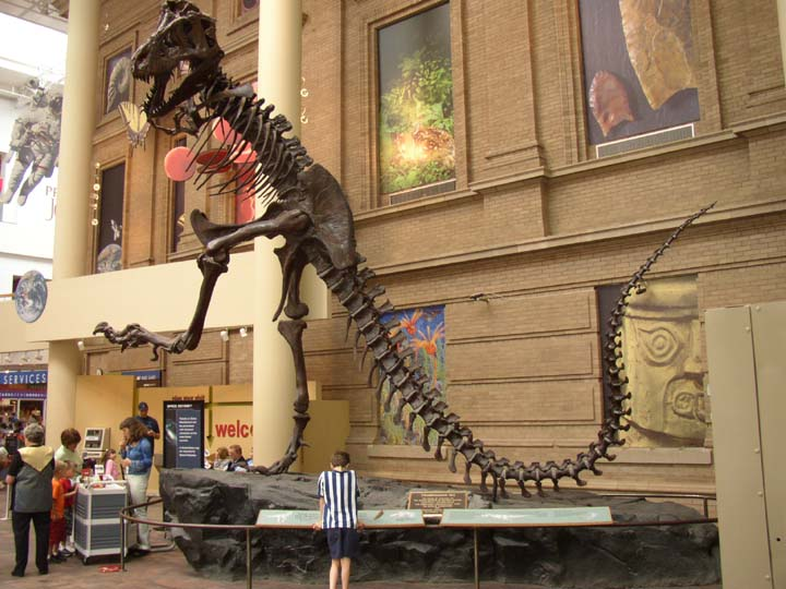 Natural History Museum Denver Tickets